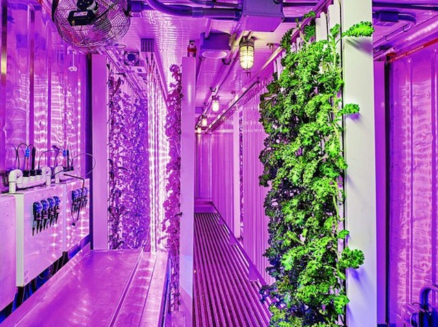 Elon Musk S Brother Aims To Revolutionize Urban Farming With Square Roots Dispatch Weekly